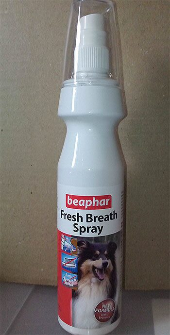 do male cats spray if they have been neutered